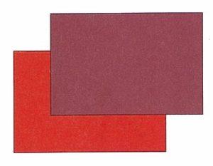 重色目 椿のイメージ