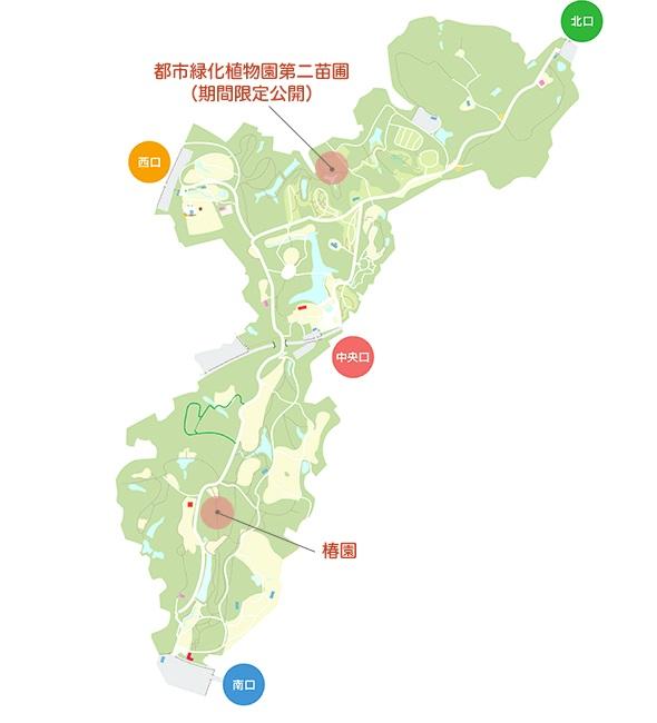 国営武蔵丘陵森林公園ツバキ園地図