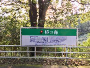横浜こどもの国椿の森看板