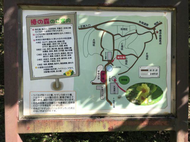 横浜こどもの国