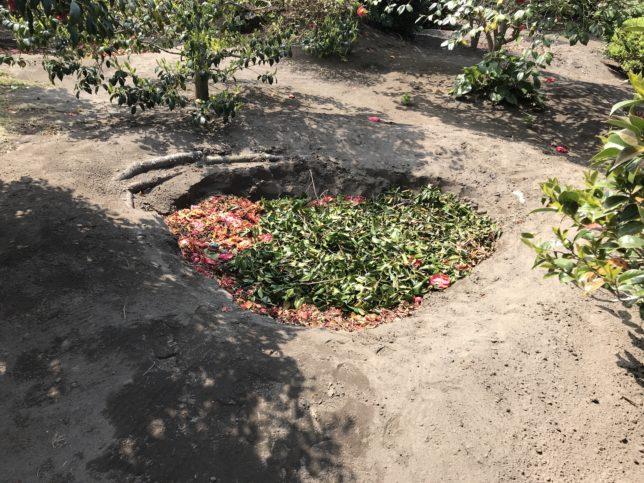 椿花ガーデン土壌改良
