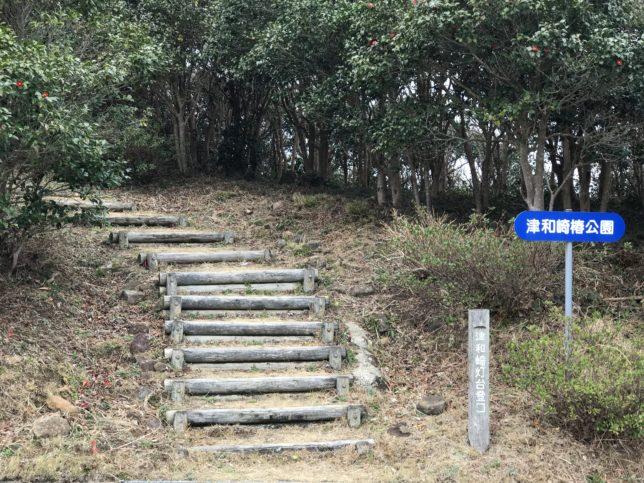 新上五島津和崎の椿公園