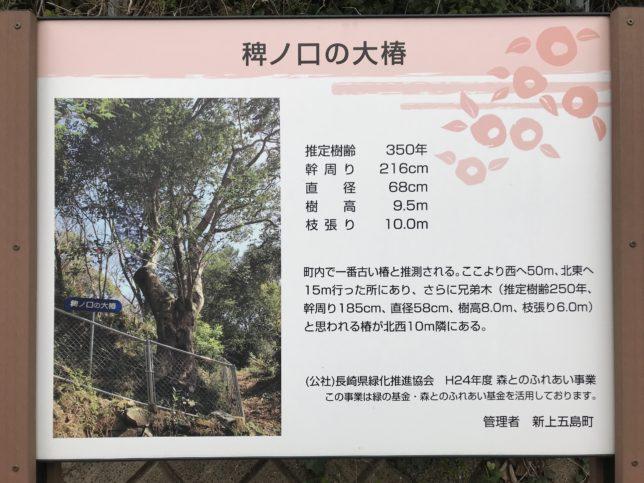 新上五島の稗ノ口の大椿案内板