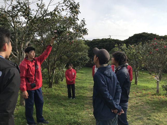 大島高校椿ガイドツアー20180407