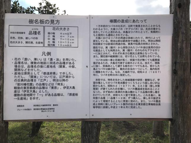 大島高校椿園樹名板の見方20171202