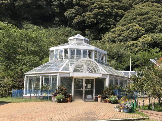 大島公園椿園温室