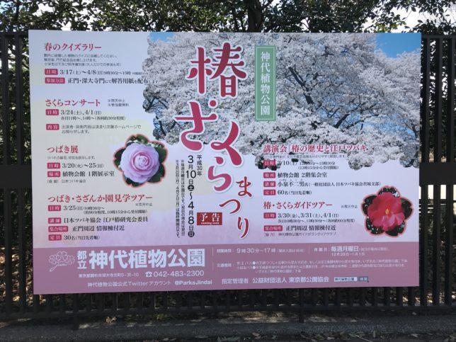 神代植物公園 椿桜祭りポスター20180306