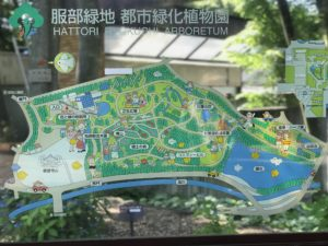 服部緑地都市緑化植物園園内地図