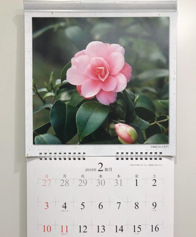 富士製版印刷椿カレンダー2019年2月