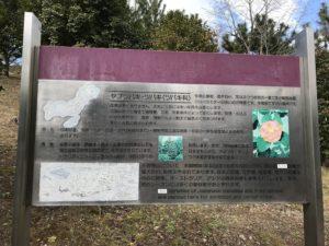 服部緑地公園椿山案内板20190201