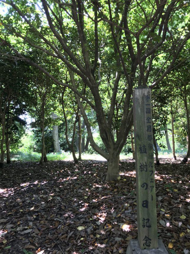 第1回都市緑化フェアー記念樹 服部緑地公園20180602