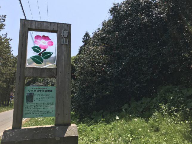夏泊椿山看板 20190526