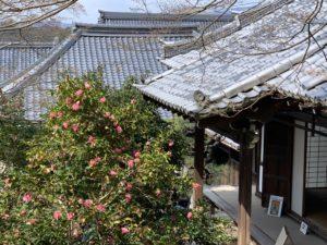 霊鑑寺2020032