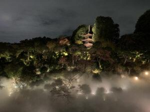 椿山荘雲海20201112